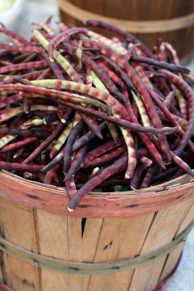 Look for unusual bean varieties at Farmer's Markets