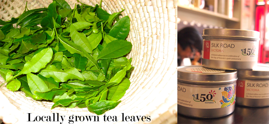 left: Locally-grown tea leaves right: Silk Road Tea Company's Victoria Tribute Blend. Photos by Deanna Ladret
