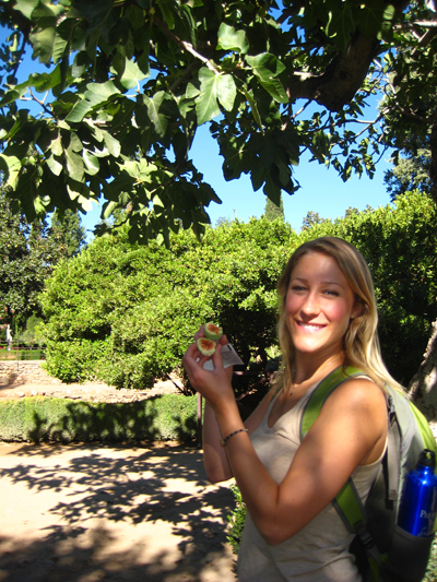 Myself picking figs from the trees at the Alhambra