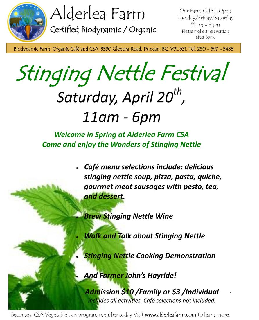 Alderlea Farm Stinging Nettle Poster 2013