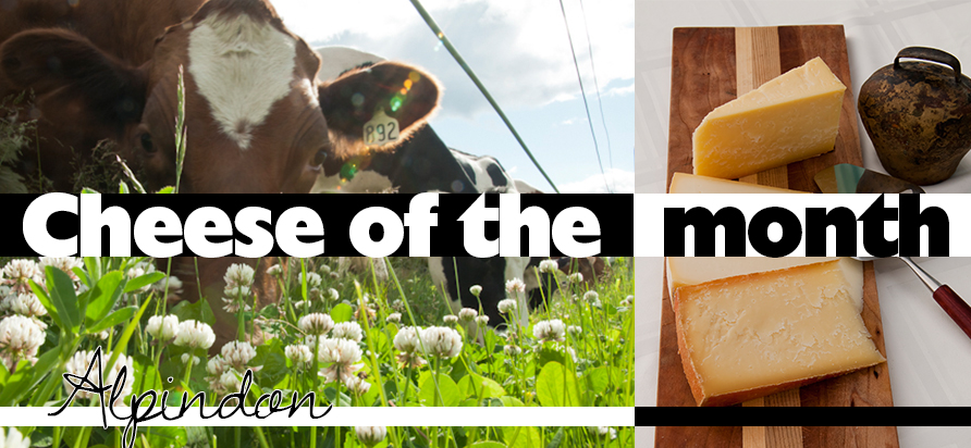Left: Dairy Cow Right: Alpindon Cheese