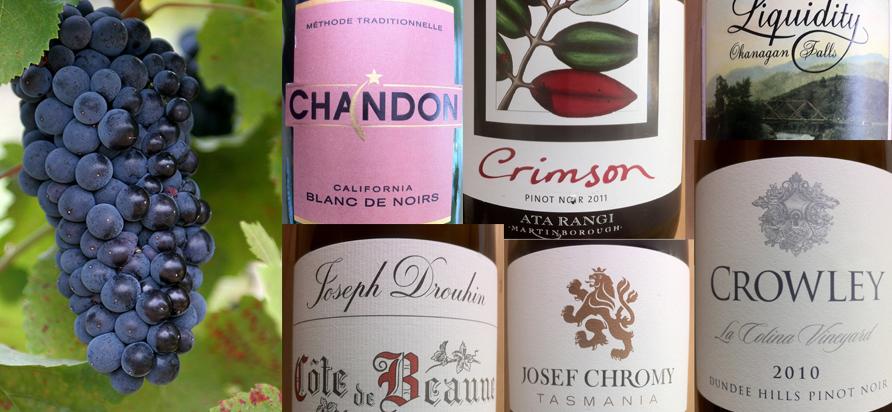 VINcab Pinot Noir