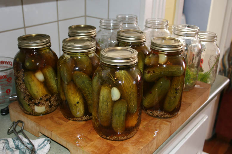 pickles - dills in the jar
