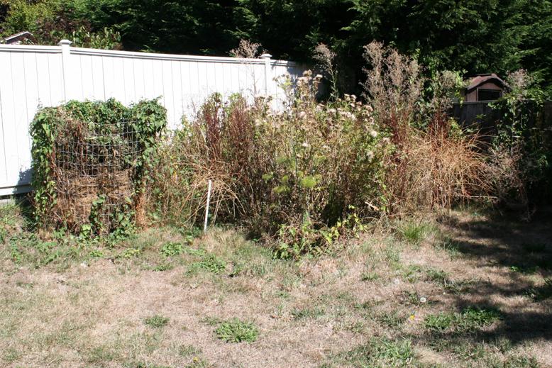 my garden - as a big mess