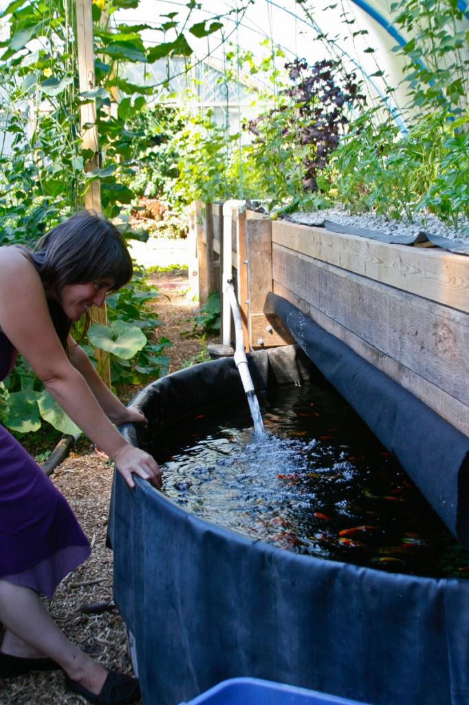 Angela Moran and the Aquaponic System