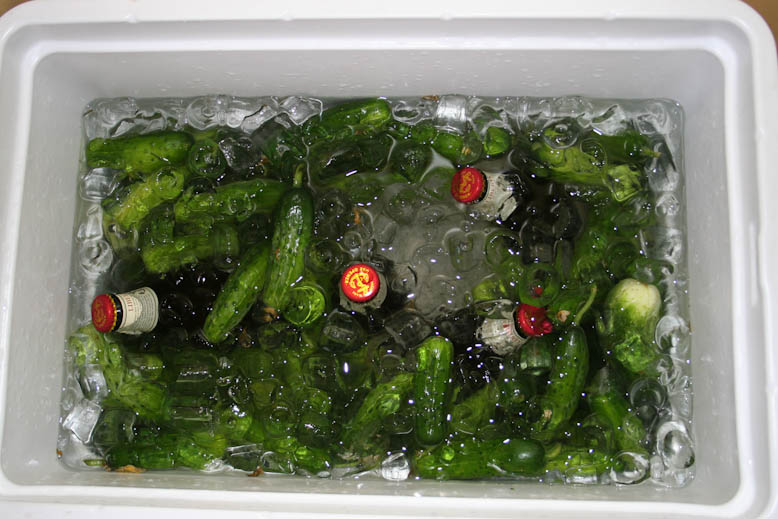 pickles - packed in ice (2)