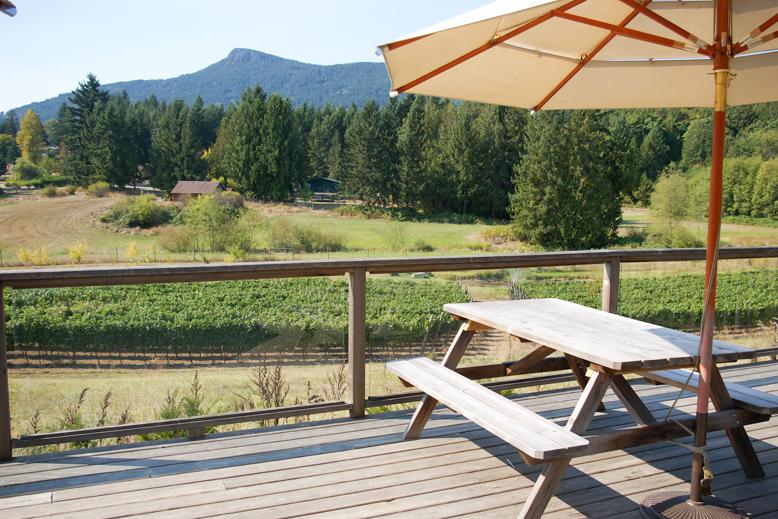 Saison patio & vineyard