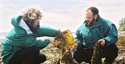 Diane Bernard and Sinclair Philip harvesting seaweed in Sooke, BC